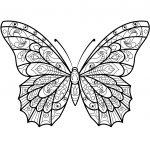 Zentangle Butterfly Coloring Page | Free Printable Coloring